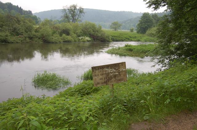 Donauversickerung Jpg